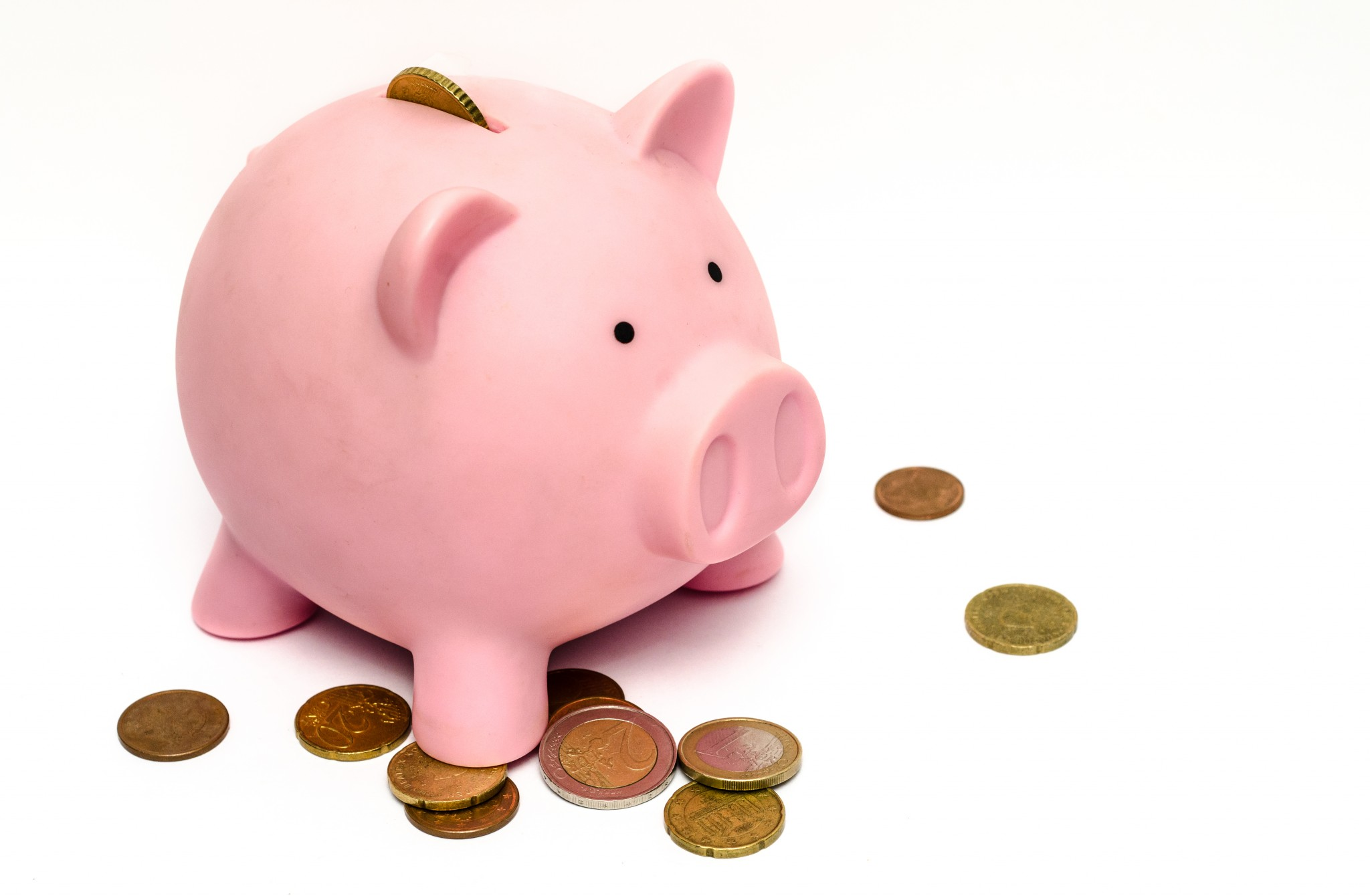 piggy - 8 top tips on how to boost your piggy bank!